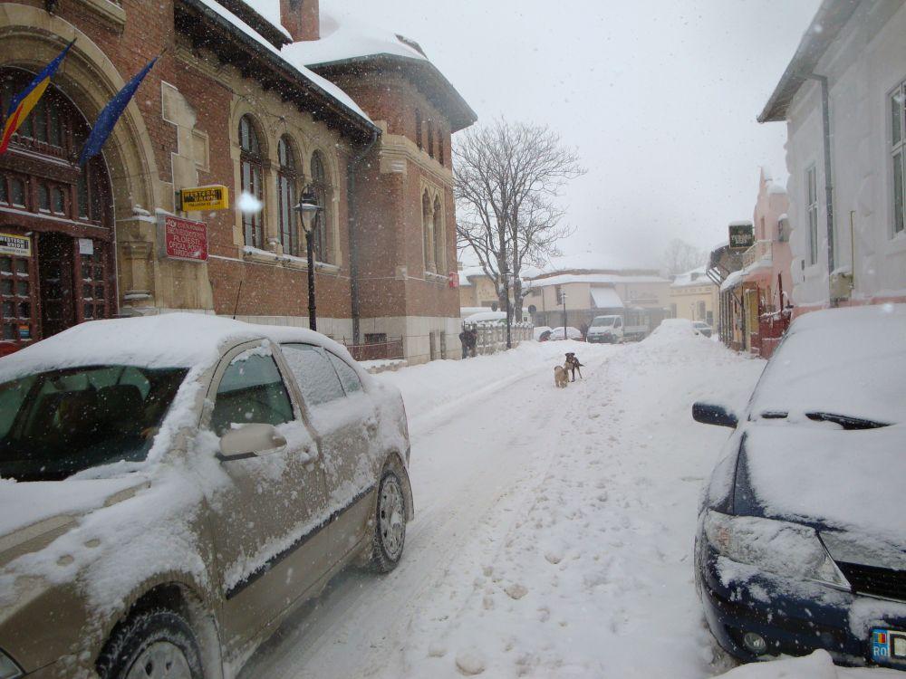 iarna tgv