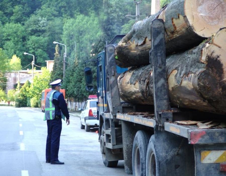 politia hoti de lemne