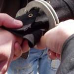 DÂMBOVIŢA: 13 hoţi de produse petroliere vor fi săltaţi de poliţiştii ...