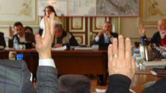 consiliul local tgv ian. 2014