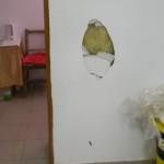 DÂMBOVIȚA: 12 săli de clasă devastate la Liceul Voinești. Unde au fost...