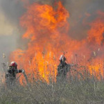 SUD MUNTENIA: Incendiul din câmp, la un pas să cuprindă mai multe case...