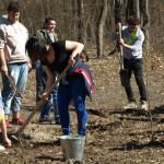 """DÂMBOVIŢA: """"Pepiniera copiilor noştri"""", acţiune de împădurire la Bucşa..."""