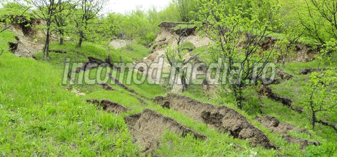 alunecari barbuletu 8