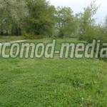 DÂMBOVIŢA: Hoţii au furat din Parcul Mihai Bravu din Târgovişte mijloa...