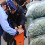 GIURGIU: Prejudiciu în valoare de 1,5 milioane de euro din comerţul cu...