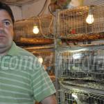 PRAHOVA: Prepeliţele, o afacere bănoasă pentru un tânăr fermier din Ch...