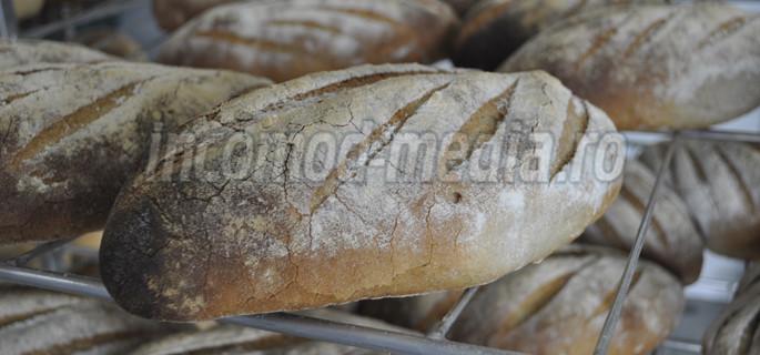 fabrica paine valea calugareasca 4