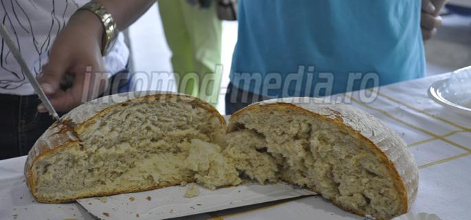 fabrica paine valea calugareasca 5