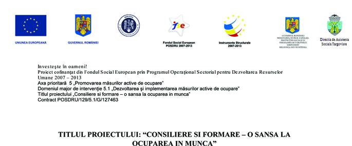 logo proiect DAS