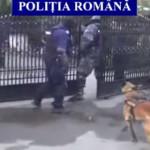 PRAHOVA: Poliţiştii au destructurat o reţea de braconieri şi hoţi de p...