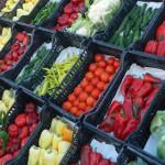 MĂSURI excepţionale de sprijin pentru producătorii de legume şi fructe...