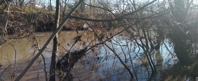 inundatii teleorman decembrie 1