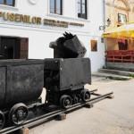 """PROMOVARE: Biblioteca Judeţeană organizează """"Ziua Roşia Montană&q..."""