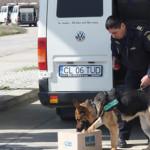 CĂLĂRAŞI: Contrabanda cu ţigări stopată cu ajutorul câinilor special a...