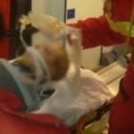 ARGEŞ: Un copil de doi ani a căzut de la etajul patru al unui bloc din...