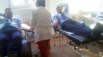 donare sange ialomita