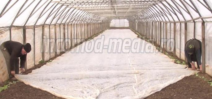 solar-1-agricultura