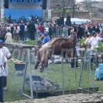 DÂMBOVIŢA: Sărbătoare privată pe bani publici! Romii petrec duminică î...