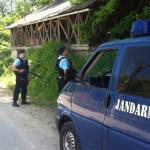 DÂMBOVIŢA: Mânat de foame, un urs a coborît în comuna Pietrari