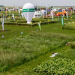 CĂLĂRAŞI: 196 de expozanţi din 15 ţări participă la târgul agricol de ...