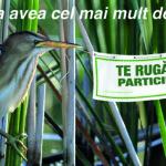 COMPETIŢIE: Dă frâu liber ideilor tale pentru a îmbunătăţi biodiversit...