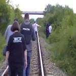 VIDEO: Trei argeşeni cultivau cannabis la margine de cale ferată