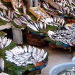 GIURGIU: Piaţa de gros pentru peşte va fi deschisă de