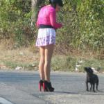 RAZIE: Poliţiştii au săltat şapte prostituate de pe traseul Târgovişte...