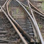 IALOMIŢA: Trenul Bucureşti-Urziceni a spulberat o cireadă de vite