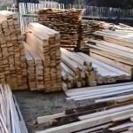 VIDEO: Angajaţii ocoalelor silvice private din Argeş ajutau hoţii să t...