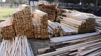 Perchezitii lemne