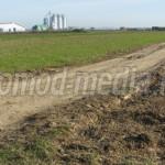 DÂMBOVIŢA: Drumurile agricole de la Nucet vor fi modernizate cu fondur...