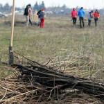 CAMPANIE: Plantăm fapte bune în România! Pe 14 noiembrie, simultan în ...