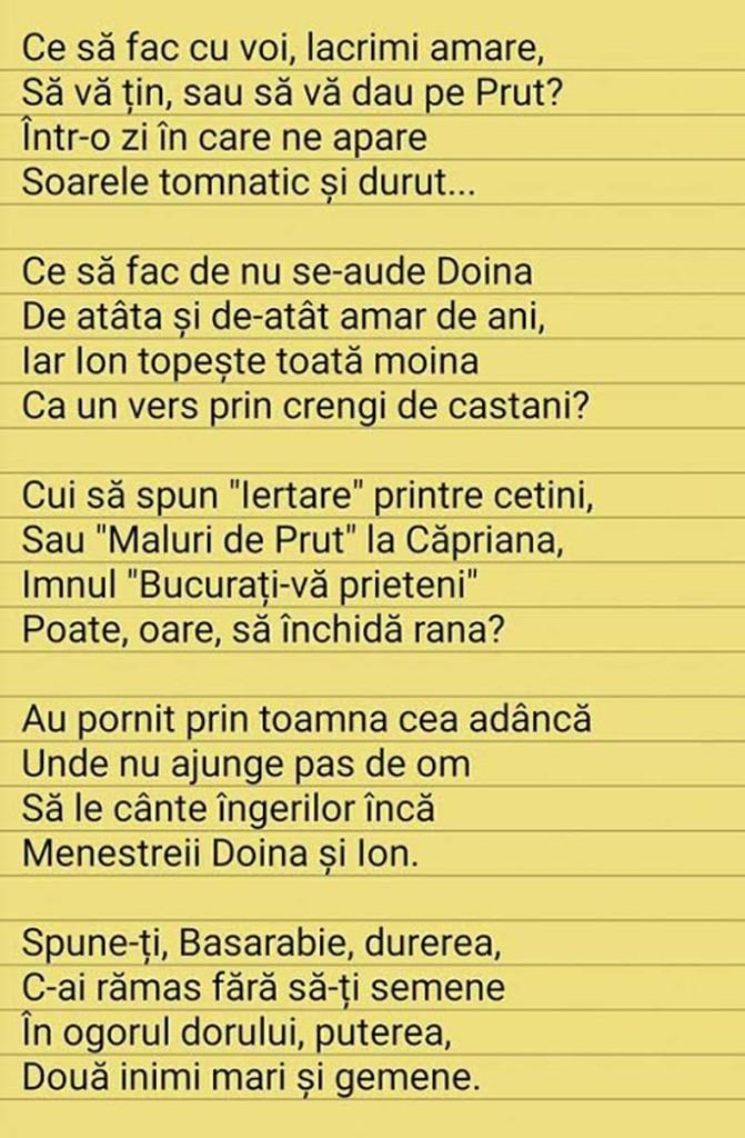poem vi ctor mihalache