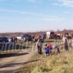 DÂMBOVIŢA: Târg ilegal de cai, la marginea oraşului Titu. Geambaşii n-...