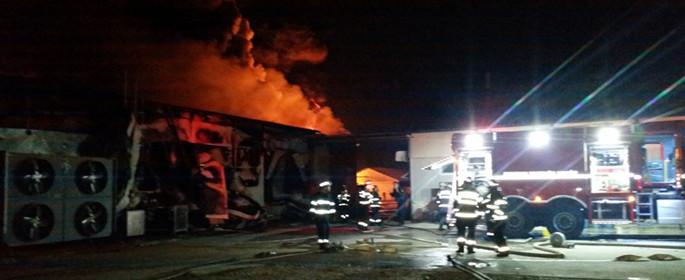 incendiu fabrica mezeluri 1
