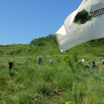 GIURGIU: Voluntarii plantează fapte bune în comuna Malu. Cine se alătu...