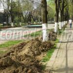 DÂMBOVIŢA: Parcul Mitropoliei din Târgovişte va fi înfrumuseţat