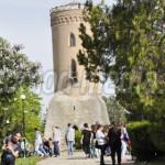 FOTO: 10.000 de programe educative în SĂPTĂMÂNA ALTFEL, în judeţul Dâm...