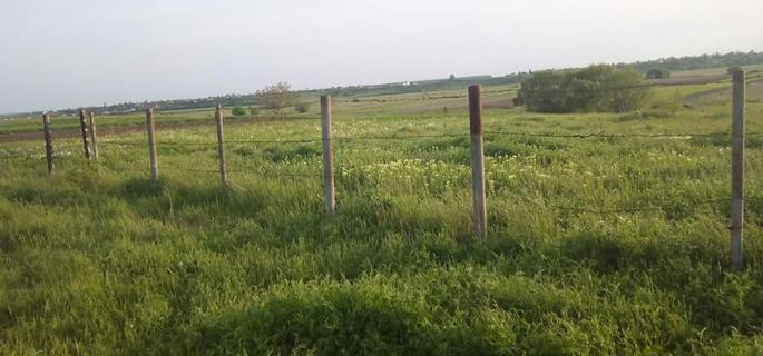 Gard cimitir sat Corbi, construit (în acte, reparaţii!) cu sârmă ghimpată, plase sudate şi stâlpii de la gardul vechi. Sumă cheltuită: 37.000 lei (370 milioane lei vechi)