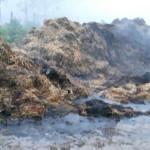PRAHOVA: Persoane necunoscute au incendiat un depozit de furaje din Mă...