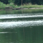DÂMBOVIŢA:  Tragedie la scăldat! Un copil de 12 ani a murit înecat