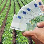 HOTĂRÂRE: Fermierii din sectorul vegetal vor primi un ajutor de stat d...