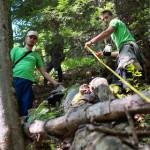 ARGEŞ: Voluntarii Greenpeace inventariază pădurile virgine din zona Vi...