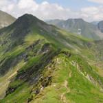 HOTĂRÂRE: Se înfiinţează Parcul Naţional Munţii Făgăraş