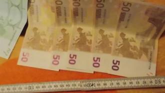 bani-camatari