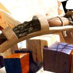 TABĂRĂ: Rădăcinile de arbori din Parcul Industrial Priboiu vor fi tran...