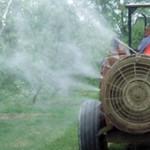 ATENŢIE! Produse fitosanitare cu efect de... apă de ploaie!