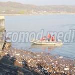DÂMBOVIŢA: Concentrare de forţe pentru curăţarea de gunoaie a Barajulu...